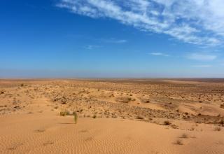 Les 5 plus grands déserts du monde
