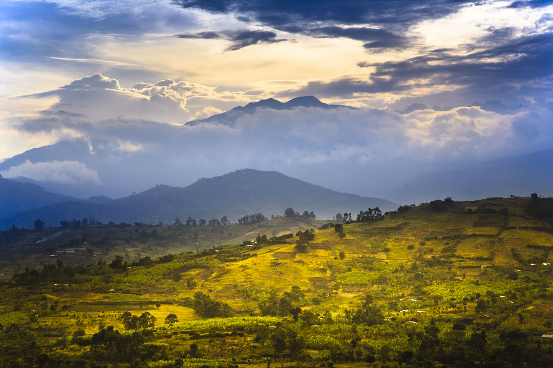montagne-rwenzori-uganda